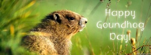 Happy-Groundhog-Day-Facebook-Cover