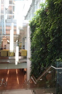 Living Wall in The Learning Exchange